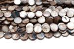 Snäckskalspärlor Coins Brun