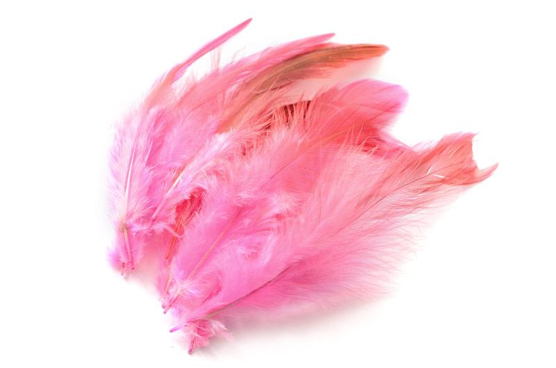 Tvåfärgade fjädrar Rosa/Brun 10st