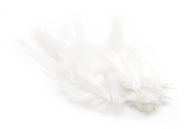 Färgade fjädrar Vita 10st