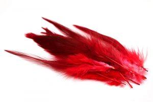 Färgade fjädrar Röd, 10st