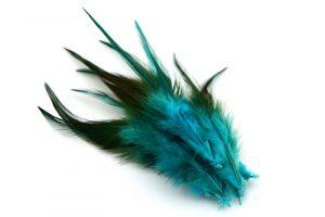Tvåfärgade fjädrar Turkosgrön ca 10st