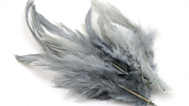 Färgade fjädrar Grå ca 10st