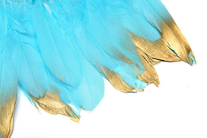 Fjädrar med guldaccent, Turkos 15-18cm långa, 5st