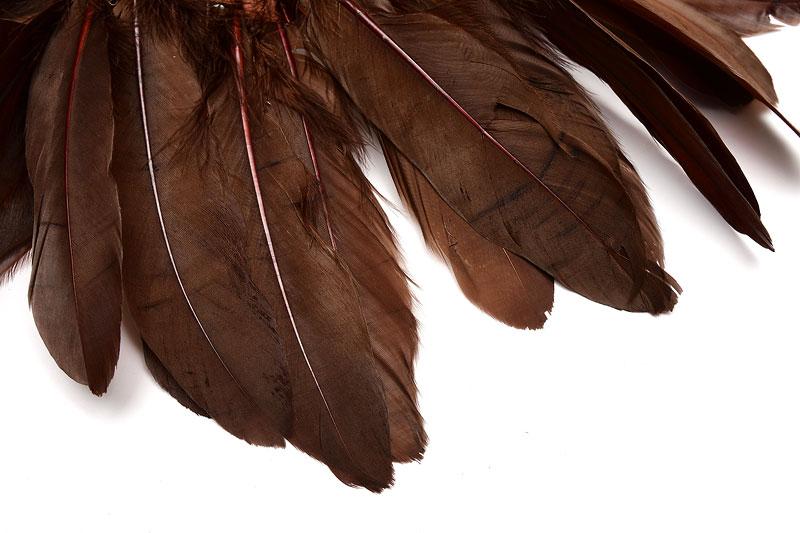 Fjädrar Chokladbrun 15-18cm långa, 5st